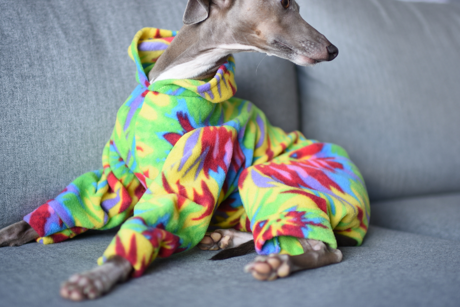 a9b18d5e0 Patterned Fleece Onesies – LOKO Pet Apparel