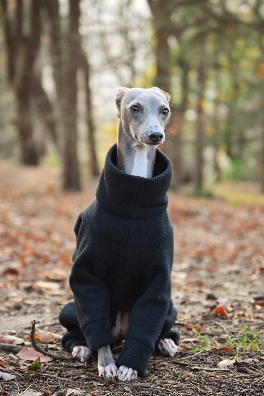 Double Layer Fleece Onesie – LOKO Pet Apparel