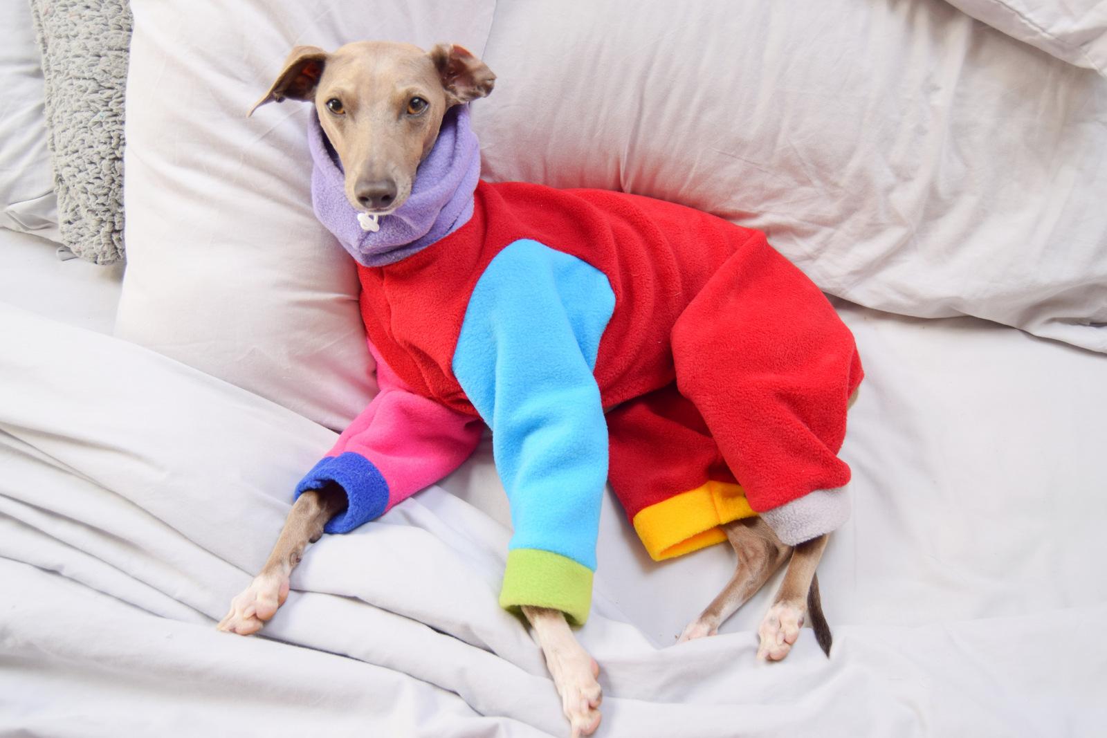 Rainbow Onesie