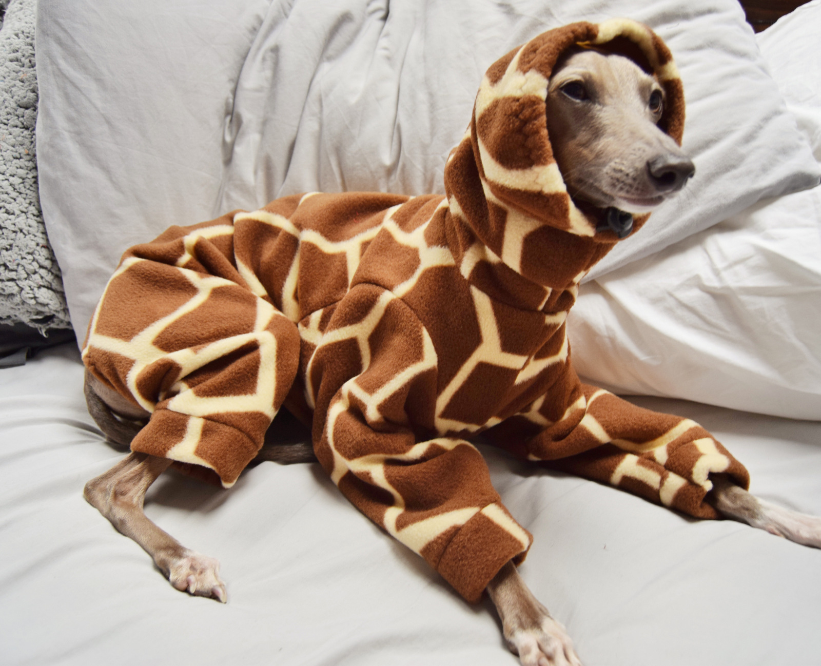 Animal Print Onesie
